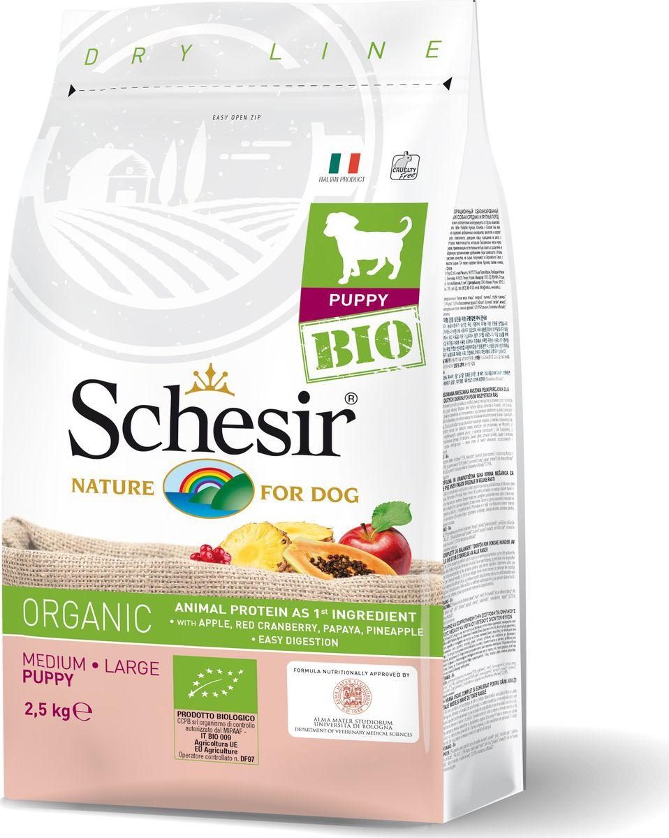Корм сухой Schesir Bio, для щенков средних и крупных пород, домашняя птица, 2,5 кг влажный корм для щенков schesir тунец с алоэ 0 15 кг
