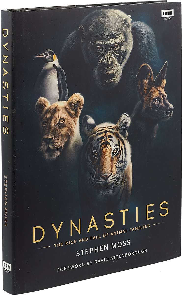 Фото - DYNASTIES theodore wong chronological tables of the chinese dynasties from the chow dynasty to the ching dynasty