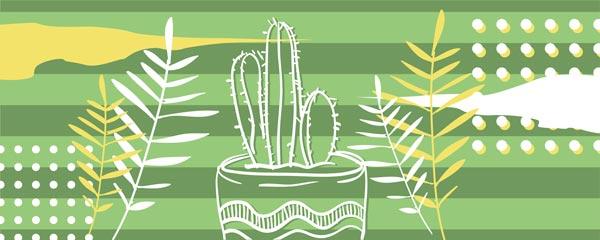 Картина Экорамка Cactus 3 50x20 см, Холст