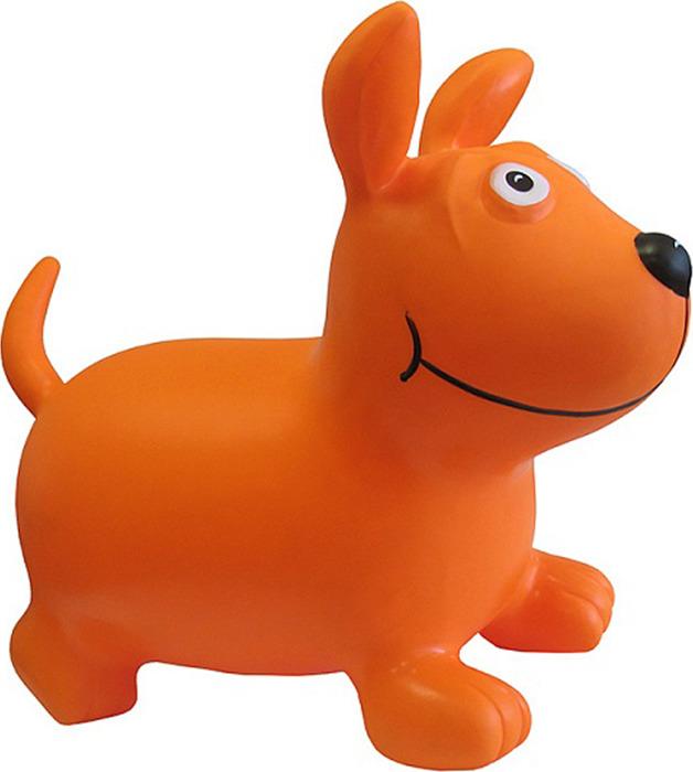 Комплексный тренажер Kinerapy Orange Dog, RK700, оранжевый