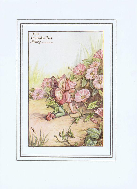 Гравюра Сесиль Мэри Баркер Фея цветов вьюнка. Офсетная литография. Сесиль Мэри Баркер. Англия, Лондон и Глазго, 1927 год