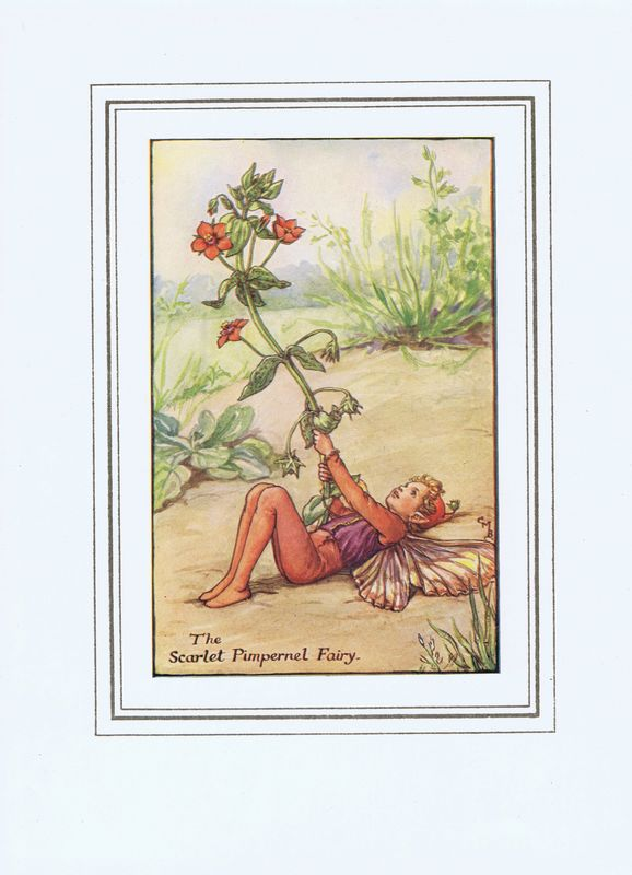 Гравюра Сесиль Мэри Баркер Эльф алого первоцвета. Офсетная литография. Сесиль Мэри Баркер. Англия, Лондон и Глазго, 1927 год