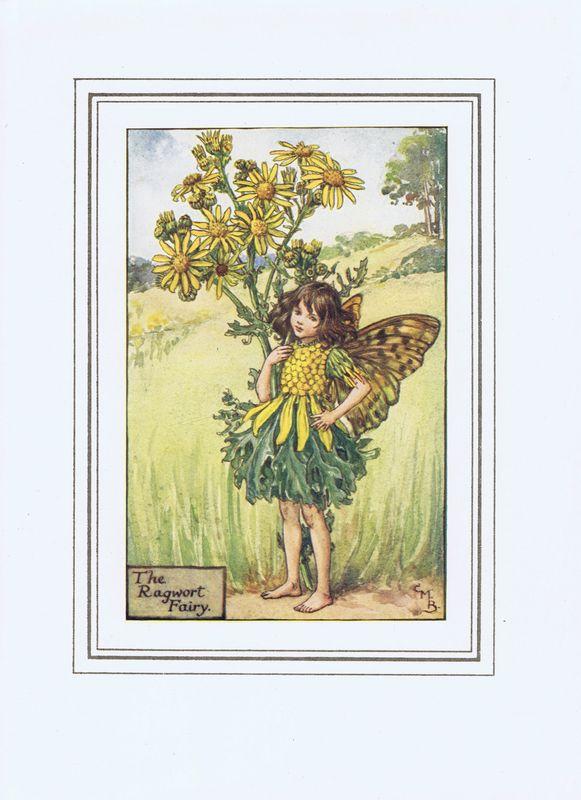 Гравюра Сесиль Мэри Баркер Фея цветов амброзии. Офсетная литография. Сесиль Мэри Баркер. Англия, Лондон и Глазго, 1927 год