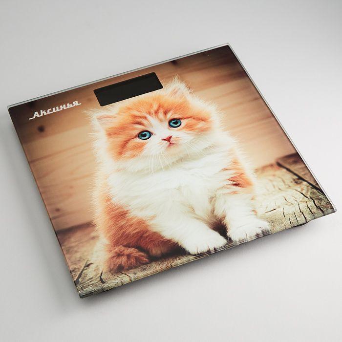 Напольные весы Аксинья КС-6000 Рыжий кот, электронные, мультиколор весы напольные аксинья кс 6005 рассвет