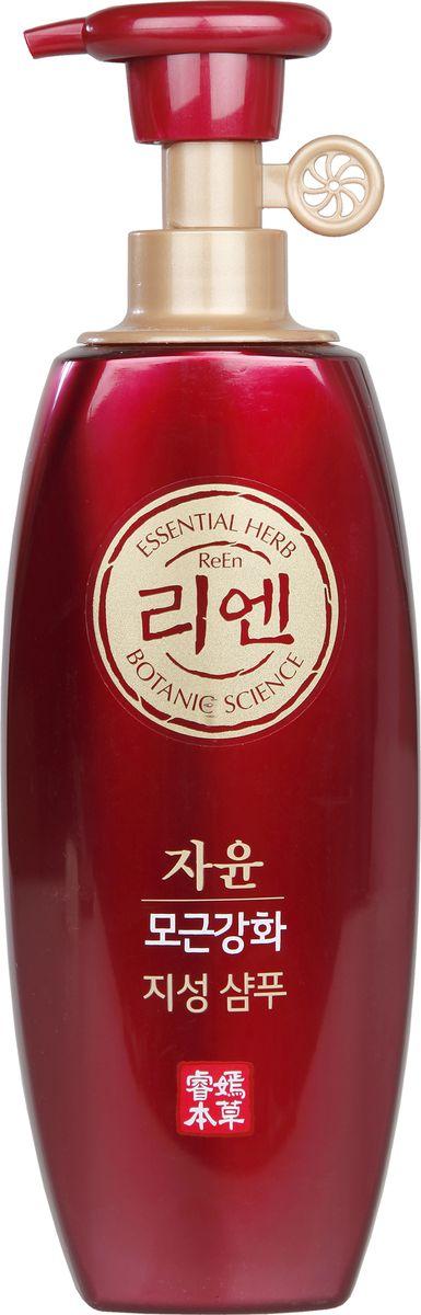 цена на Шампунь ReEn Botanic Jayun, для волос жирных у корней, уход за кожей головы и укрепление волос, 500 мл