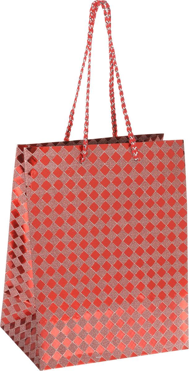Пакет подарочный Яркий Праздник Клетка, цвет: красный, 17,8 х 22,9 х 10,2 см пакет подарочный яркий праздник однотонный цвет розовый 17 8 х 22 9 х 10 2 см