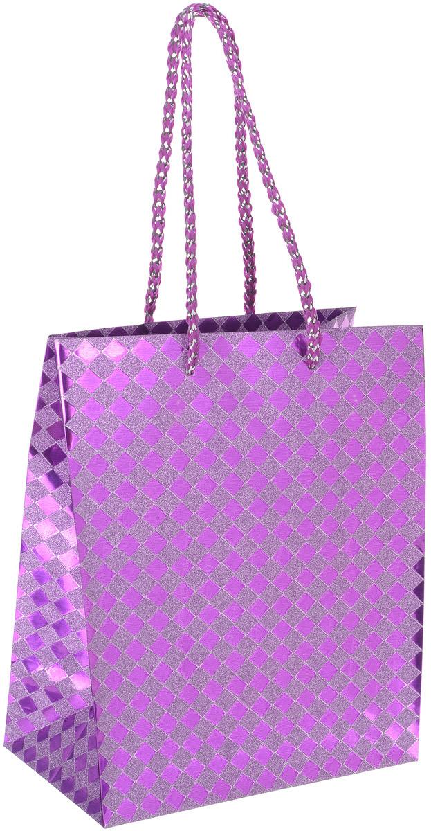 Пакет подарочный Яркий Праздник Клетка, цвет: фиолетовый, 17,8 х 22,9 х 10,2 см пакет подарочный яркий праздник однотонный цвет розовый 17 8 х 22 9 х 10 2 см