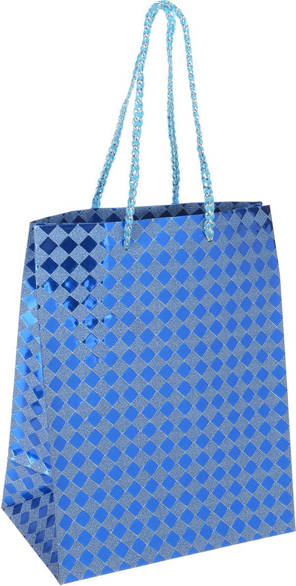 Пакет подарочный Яркий Праздник Клетка, цвет: синий, 17,8 х 22,9 х 10,2 см пакет подарочный яркий праздник однотонный цвет розовый 17 8 х 22 9 х 10 2 см