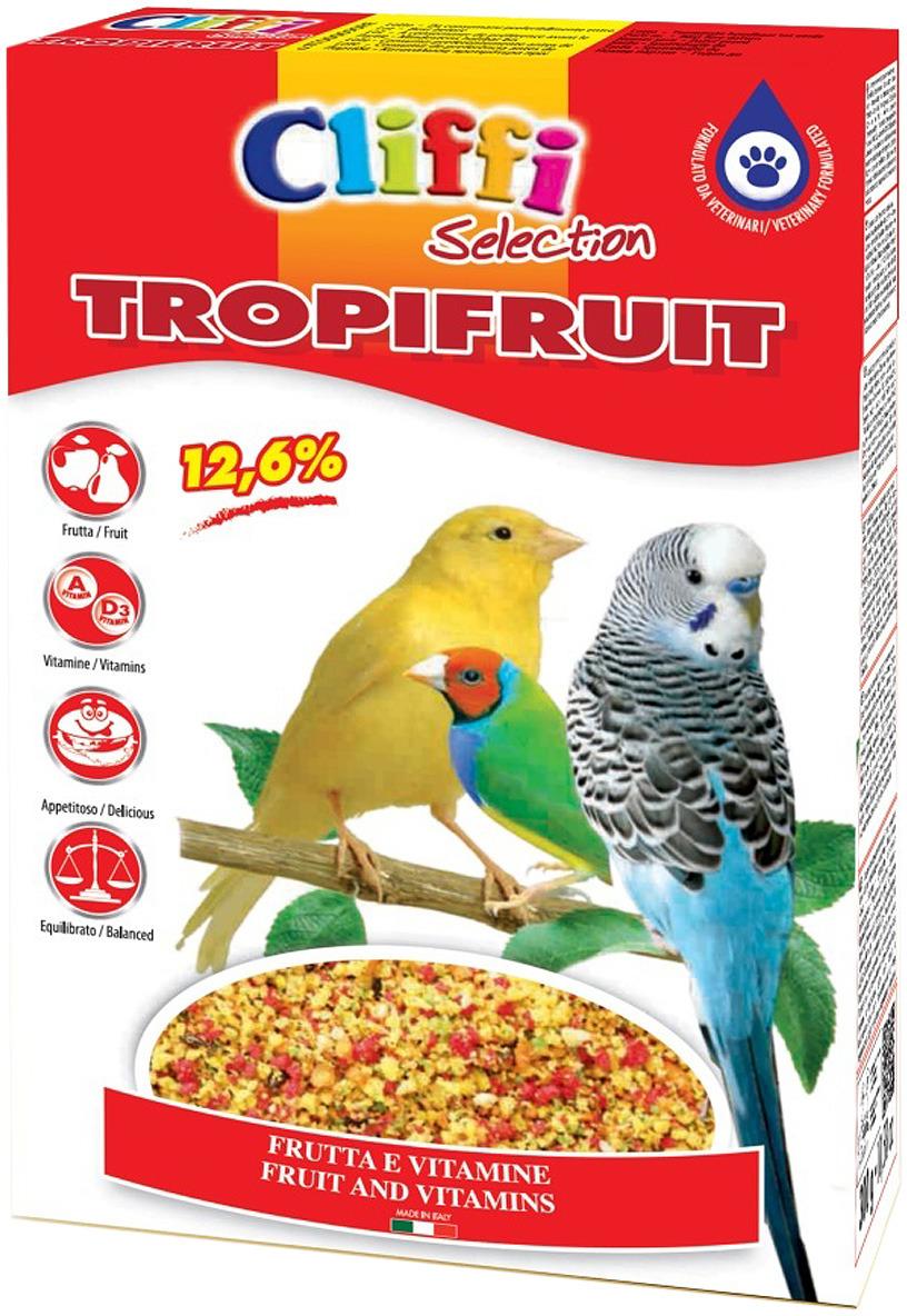Корм сухой Cliffi Tropifruit Яичный, с фруктами, для птиц, 300 г