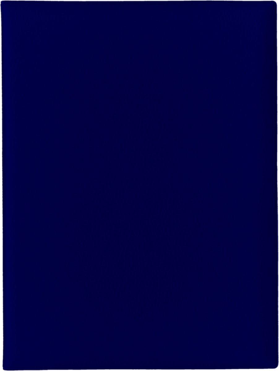 Папка с файлами Стрекоза, A4+, 1686, синий