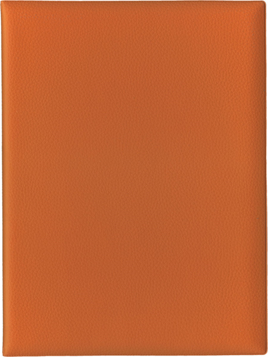Папка с файлами Стрекоза, A4+, 1685, оранжевый