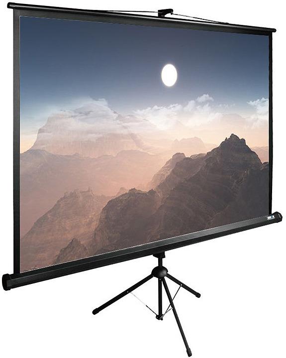 все цены на Проекционный экран Cactus TriExpert CS-PSTE-180x180-BK 1:1, напольный, рулонный, черный онлайн