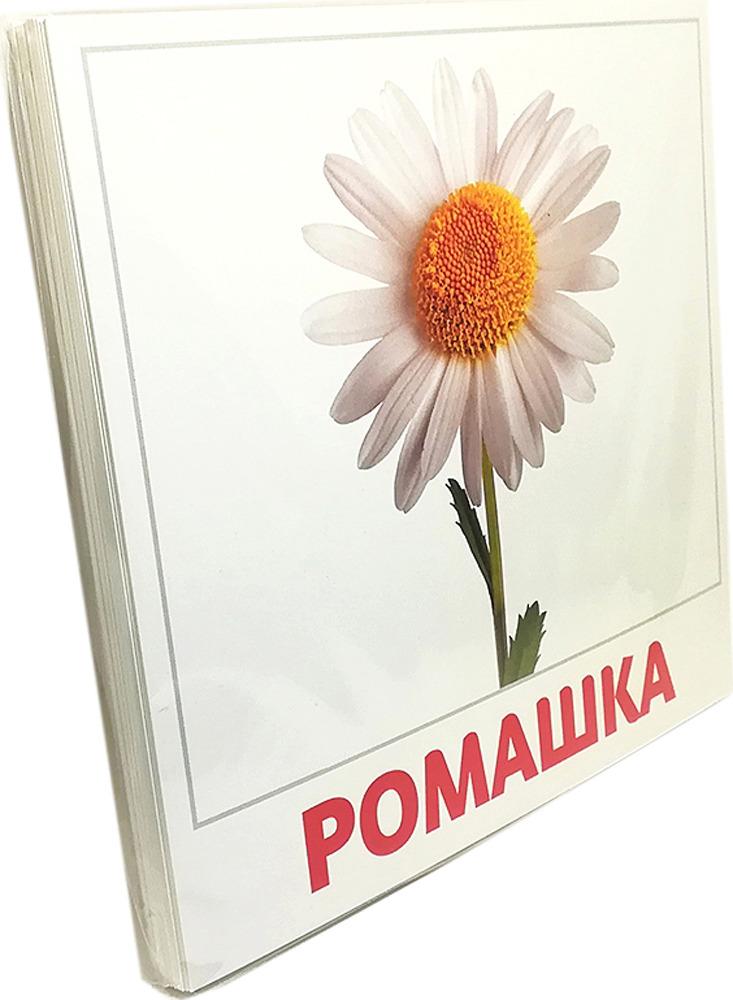 Обучающая игра АгаБум Карточки Домана Цветы