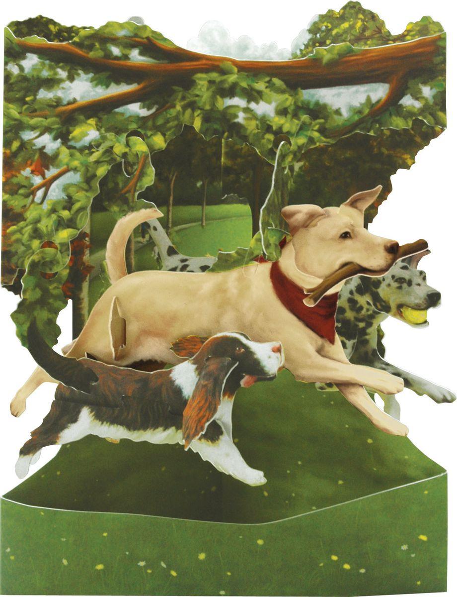 Открытка Santoro Собаки в парке, объемная, разноцветный, 20 х 14 х 10 см открытка объемная veld co серебряное копытце 21 х 10 см