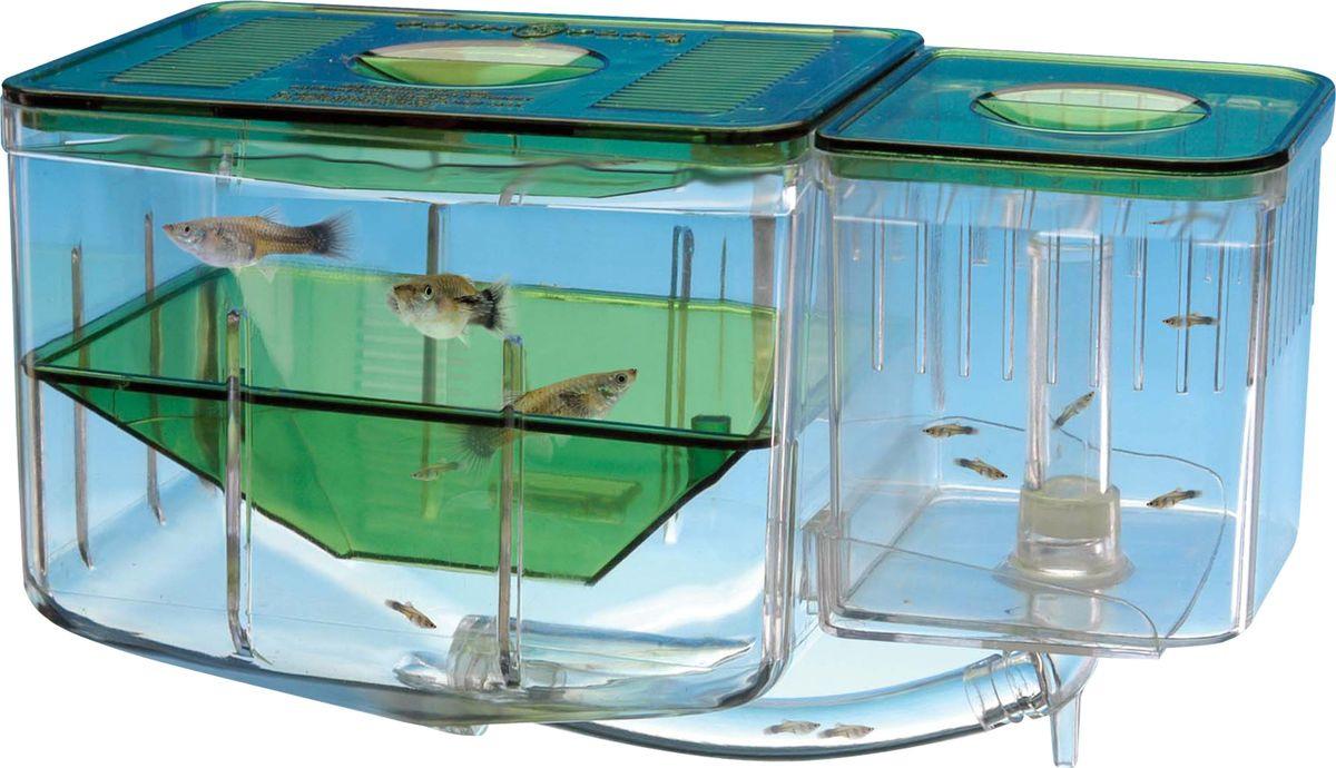 Отсадник для рыб Penn-Plax Aqua Nursery, AN2 отсадник для рыб hagen
