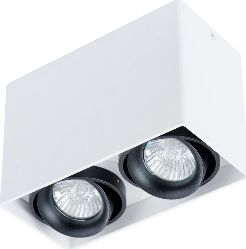 Потолочный светильник Arte Lamp Pictor, A5655PL-2WH, белый