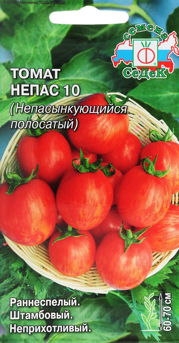 Семена Седек Томат Непас 10 (Непасынкующийся полосатый), I0000002635, 0,1 г цена
