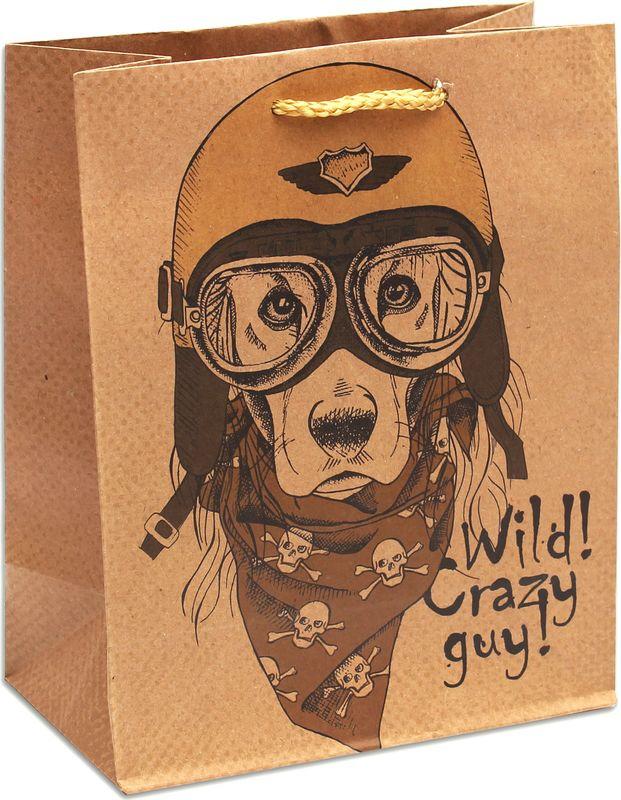 Подарочная упаковка Miland Собака в шлеме, 18 х 23 х 10 см подарочная упаковка miland лама на прогулке 18 х 23 х 10 см