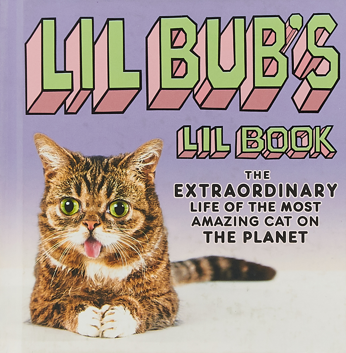 Lil BUB's Lil Book: The Extraordinary Life of the Most Amazing Cat on the Planet лиль мо lil mo meet the girl next door