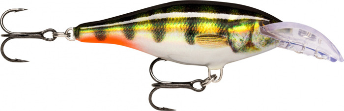 Воблер Rapala, плавающий, DSCRS07-PEHL, Rainbow Trout, длина 70 мм, 7 г