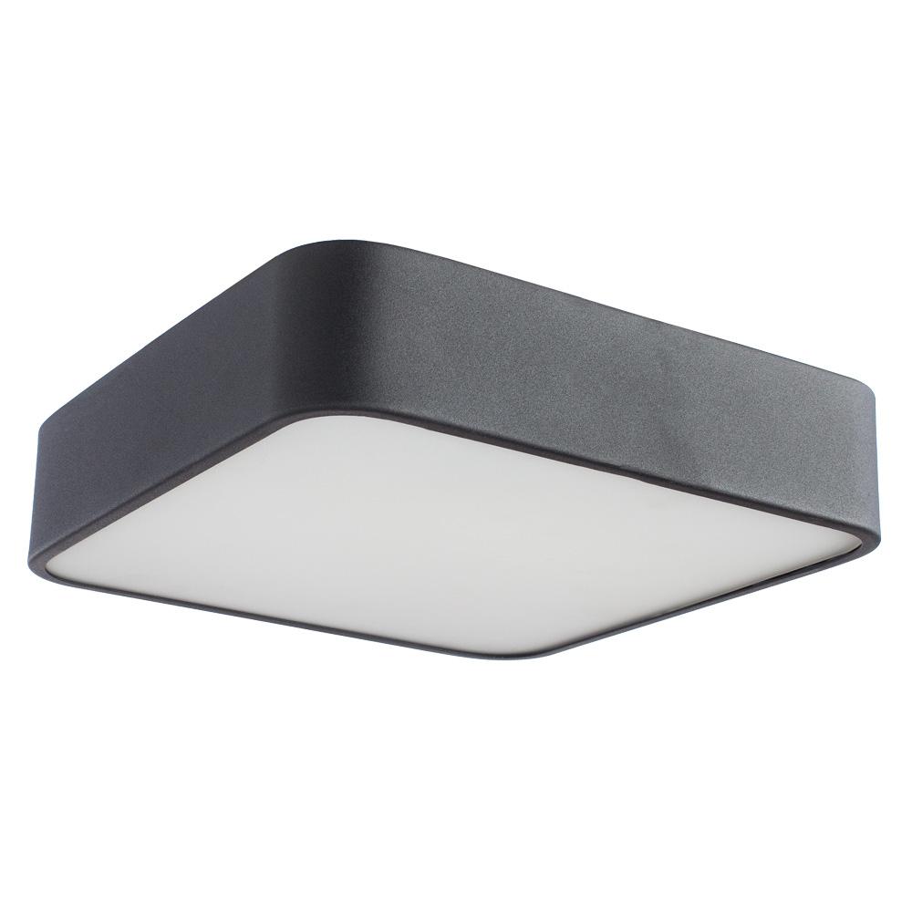 Потолочный светильник Arte Lamp A7210PL-2BK, черный цена