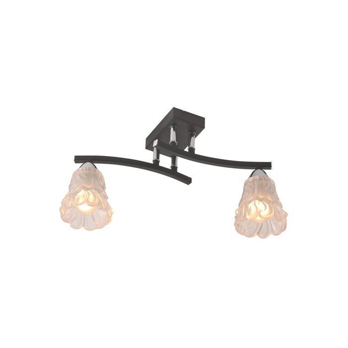 Потолочный светильник Idlamp 217/2PF-Blackchrome, серый металлик