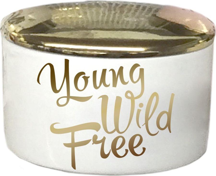 Шкатулка декоративная Magic Home Young Wild, 79915, золотой декоративная шкатулка сердце