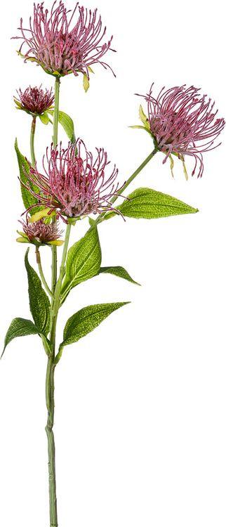 Искусственные цветы Lefard Леукоспермум Сердцелистный, 21-1002, 74 х 14 х 6 см стол mariott d80 х 74 см