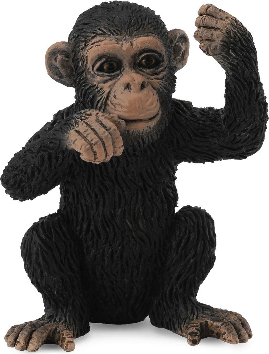Фигурка Collecta Детеныш шимпанзе, 88495b