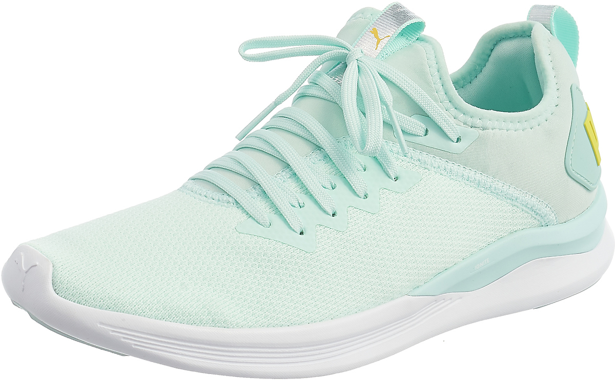 Кроссовки PUMA Ignite Flash evoKnit SR Wn s