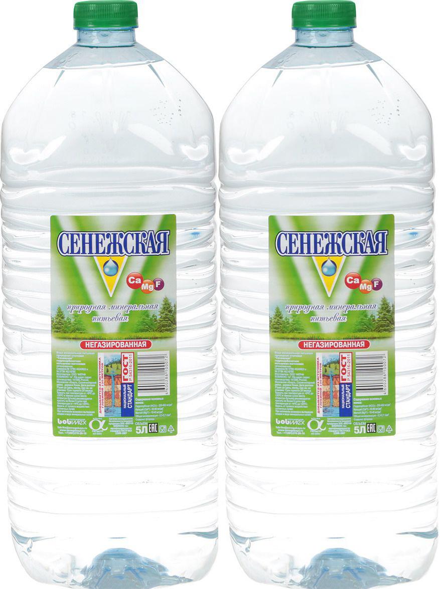 Вода Сенежская, негазированная, 2 шт по 5 л roche des ecrins вода минеральная природная питьевая столовая негазированная 0 5 л