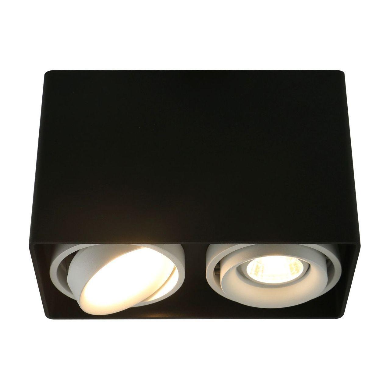 Потолочный светильник Arte Lamp A5655PL-2BK, черный цена 2017