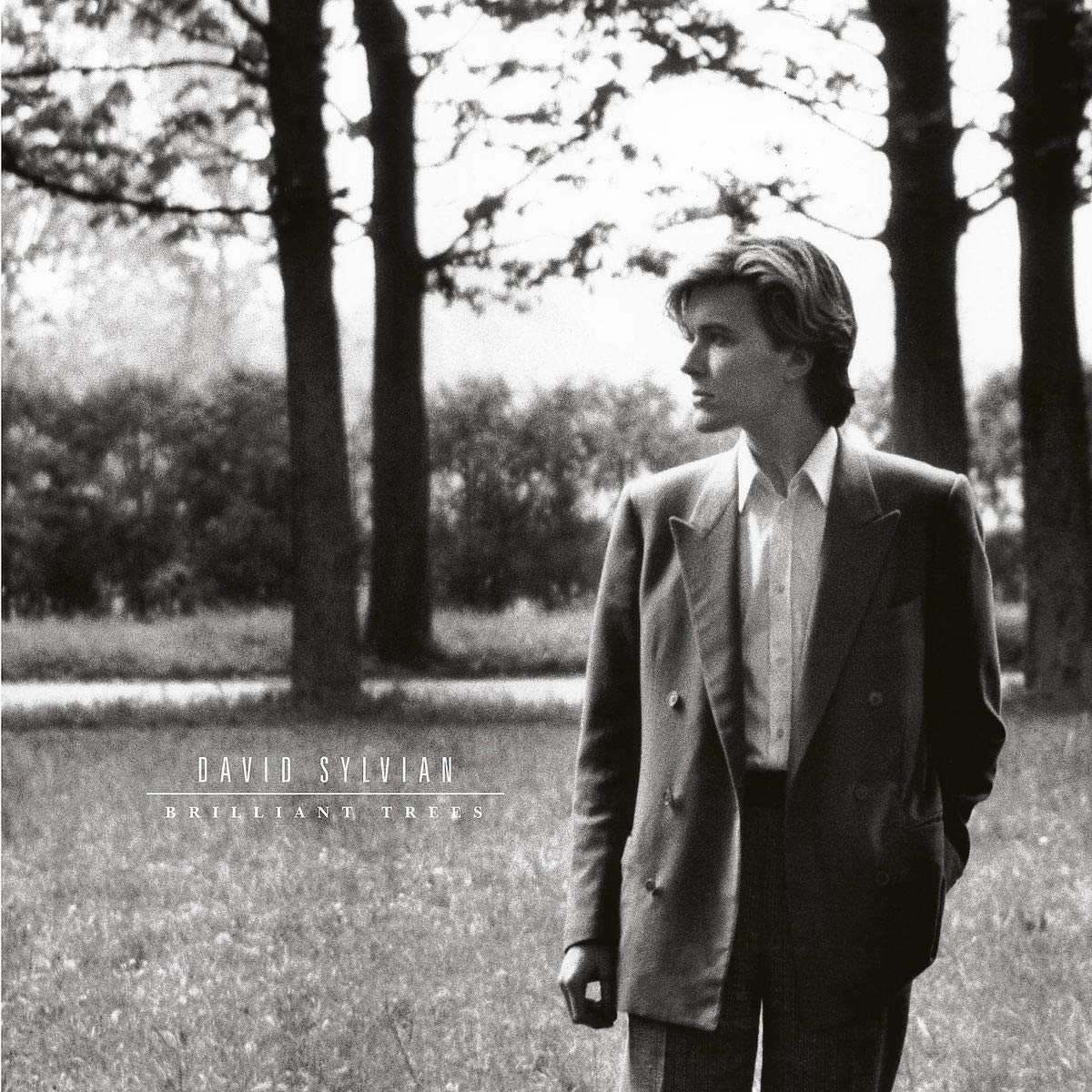Дэвид Сильвиан David Sylvian. Brilliant Trees (LP) цена