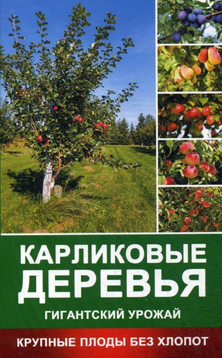 Раиса Кулакова Карликовые деревья - гигантский урожай. Крупные плоды без хлопот в саду 25 яблоневых деревьев они составляют 5 7 всех деревьев