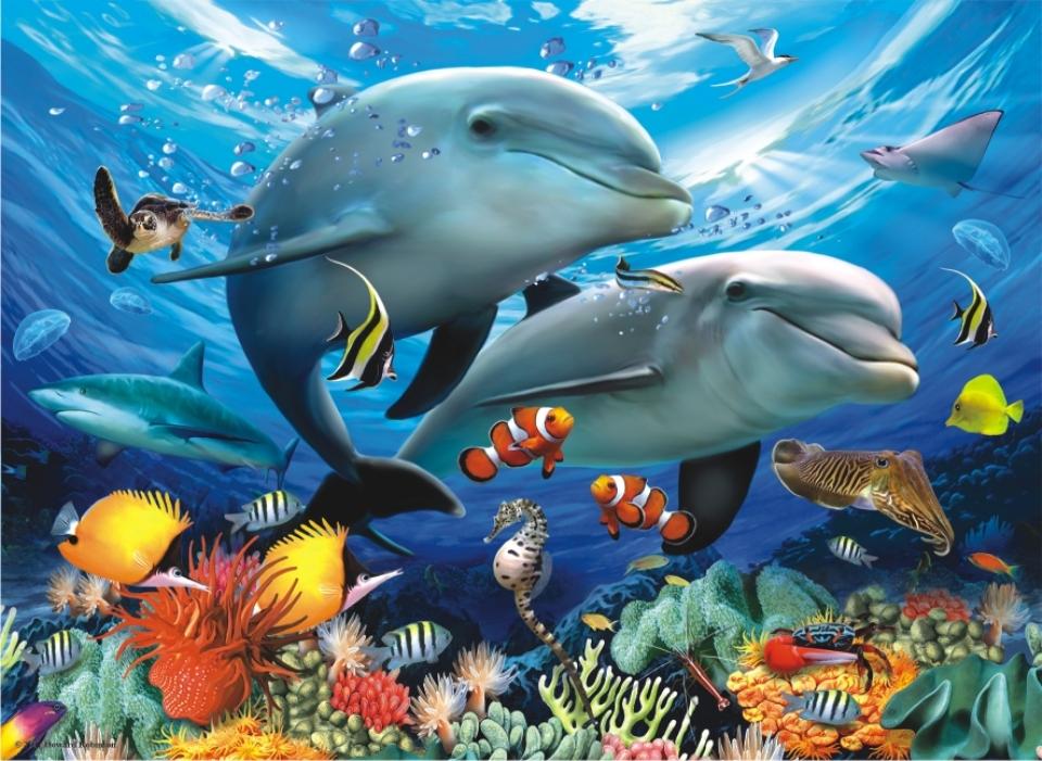 Картинки рыбы океана для детей