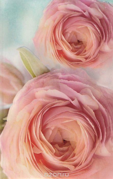 где купить Блокнот. Розы по лучшей цене