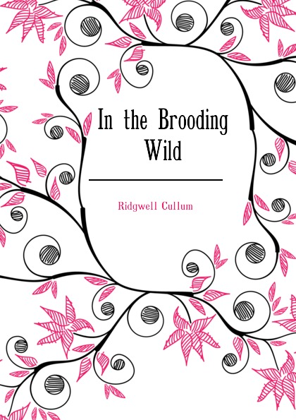 Cullum Ridgwell In the Brooding Wild cullum ridgwell in the brooding wild