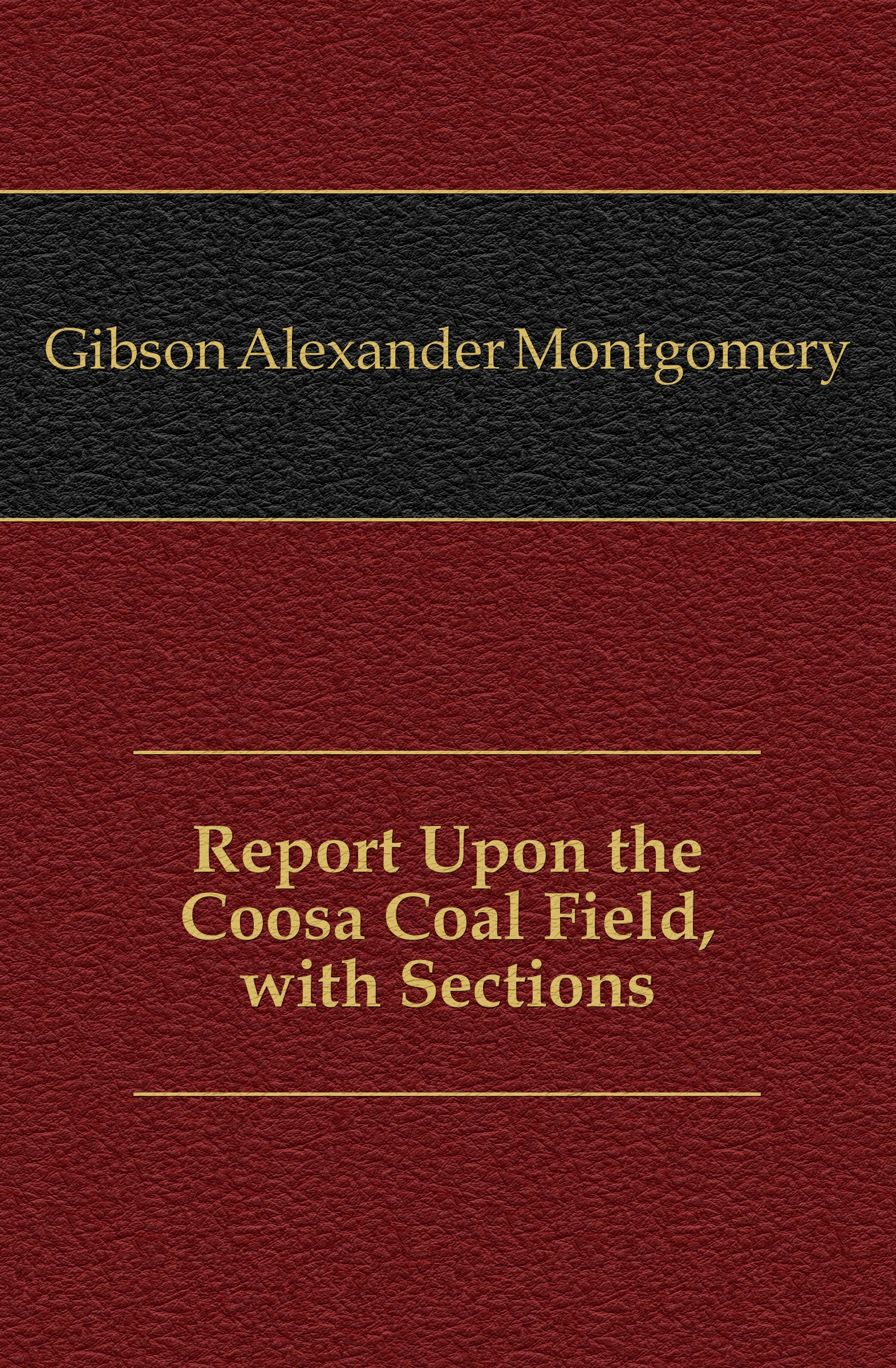 Gibson Alexander Montgomery Report Upon the Coosa Coal Field, with Sections