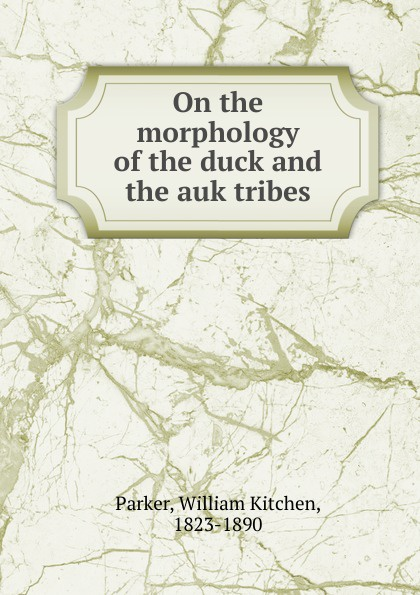 William Kitchen Parker On the morphology of the duck and the auk tribes new female tribes