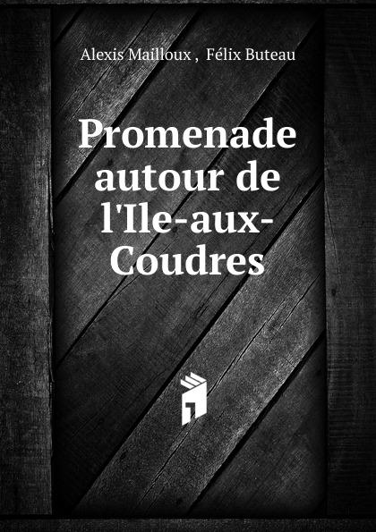 Alexis Mailloux Promenade autour de l.Ile-aux-Coudres games a1 l ile aux prepositions