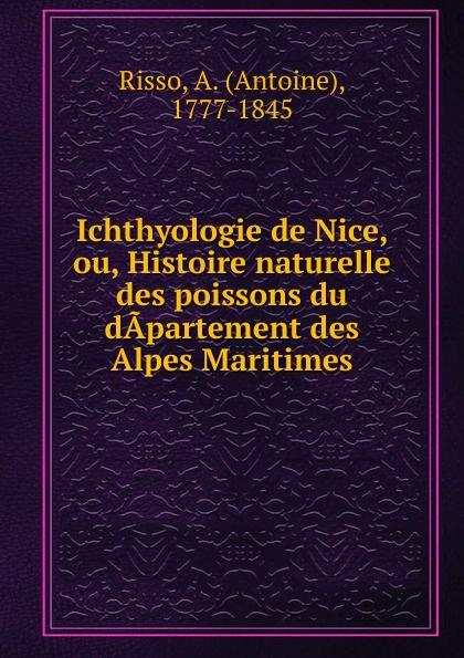 Antoine Risso Ichthyologie de Nice, ou, Histoire naturelle des poissons du dapartement des Alpes Maritimes antoine risso ichthyologie de nice ou histoire naturelle des poissons du dapartement des alpes maritimes