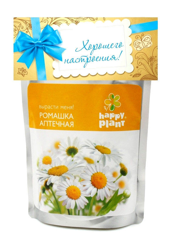 Набор для опытов Happy Plant Ромашка растение happy plant ромашка hp 10