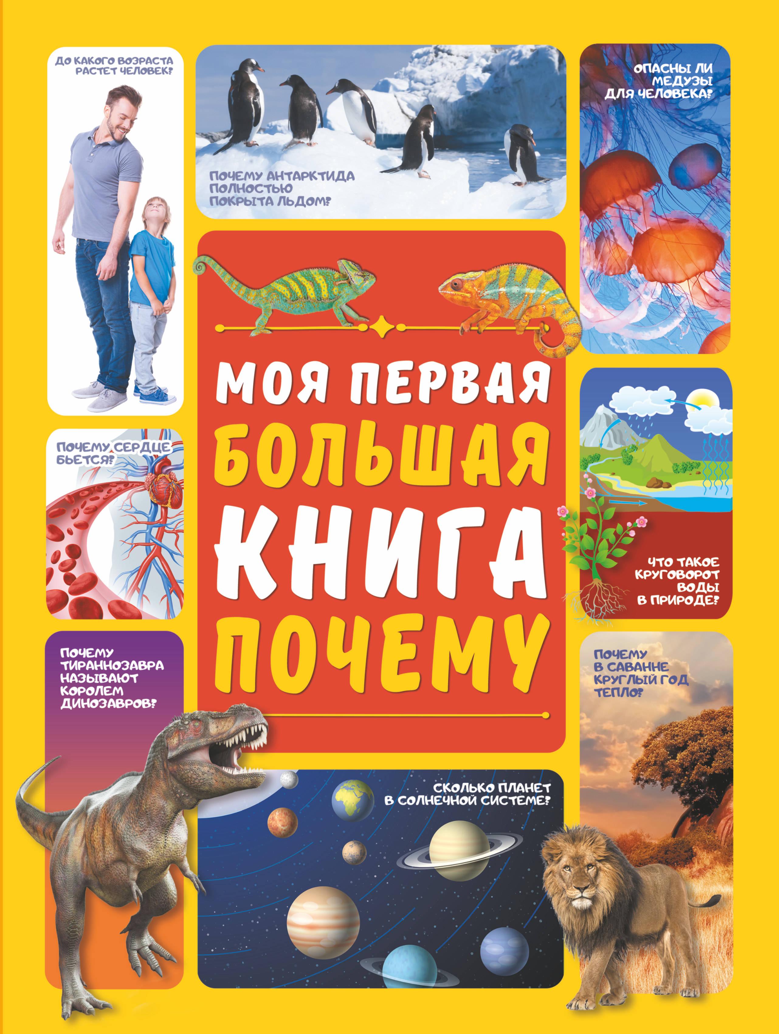Д. И. Ермакович Моя первая большая книга ПОЧЕМУ
