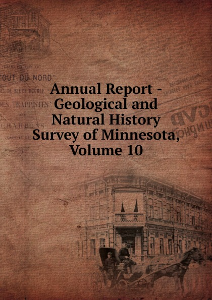 Annual Report - Geological and Natural History Survey of Minnesota, Volume 10