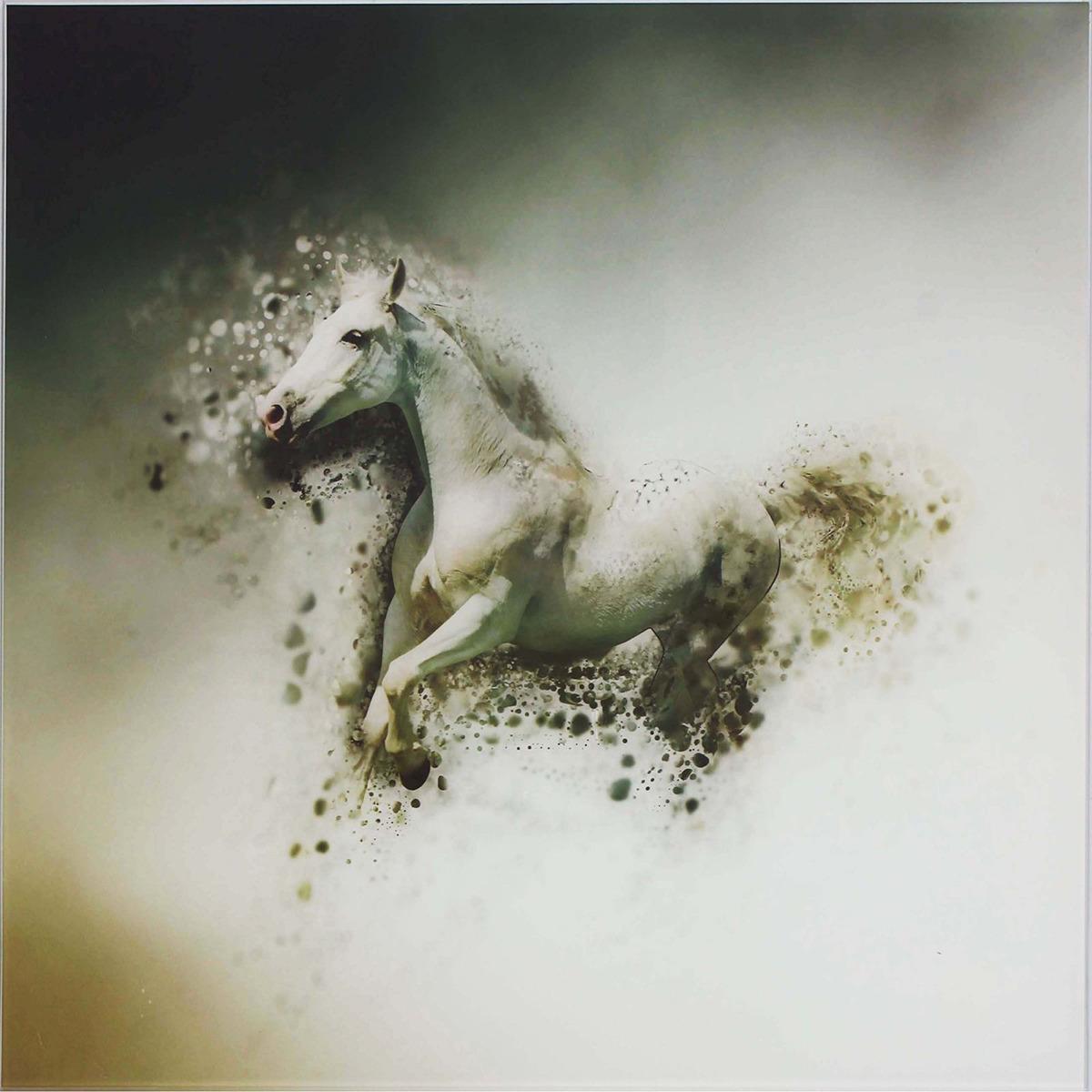 Картина Конь, 1177325, 50 х 50
