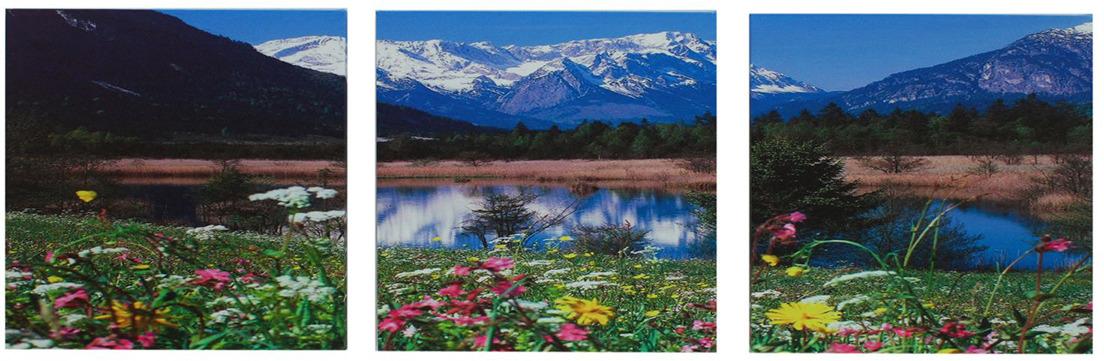 """<b>Картина Художественная мастерская Палитра</b> """"Горное озеро ..."""