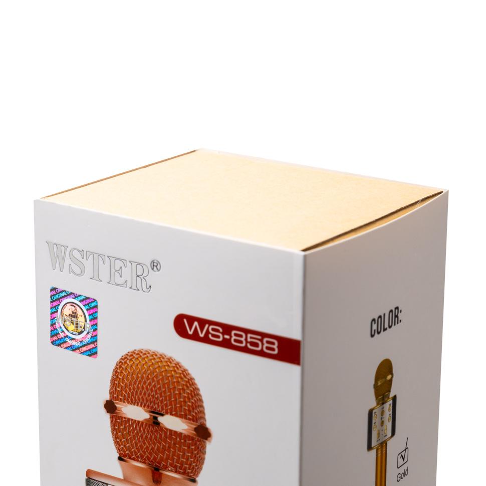 Микрофон WSTER WS-858, черный