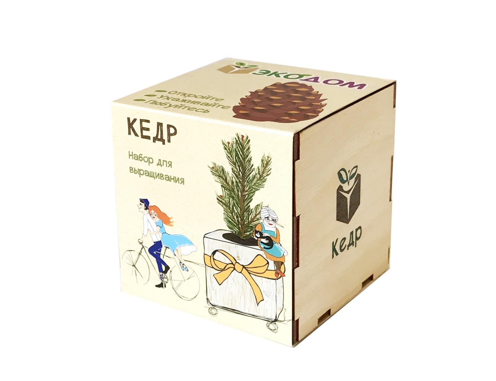 Набор для выращивания в древесном кубике ЭкоДом. Кедр