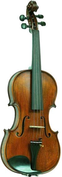 Скрипка Vasile Gliga I-V014-S vasile florea rafael