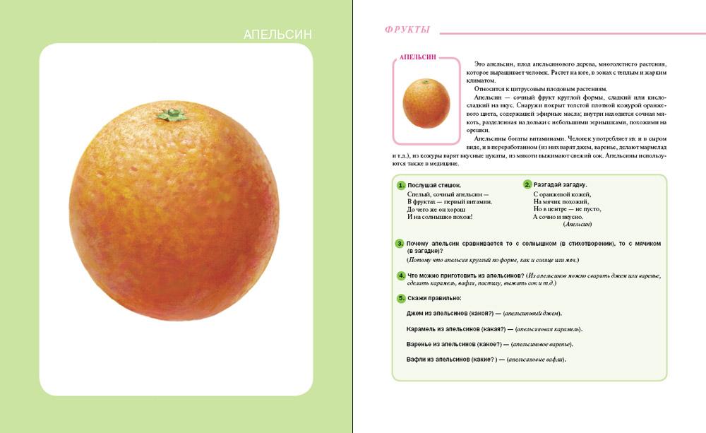 Фрукты. Овощи. Тематический словарь в картинках: Мир растений и грибов (формат 70х90/16, 80 стр.)